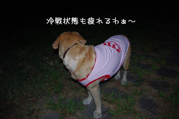 s-myu2009_0831(007)