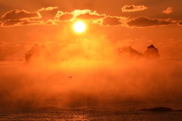 田原の海霧8