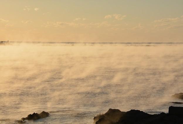 田原の海霧11