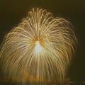 写真: こうのす花火大会 四尺玉