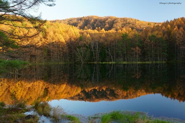 写真: 晩秋の御射鹿池♪
