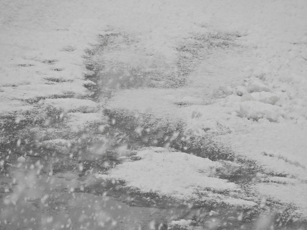 水たまりに降る雪