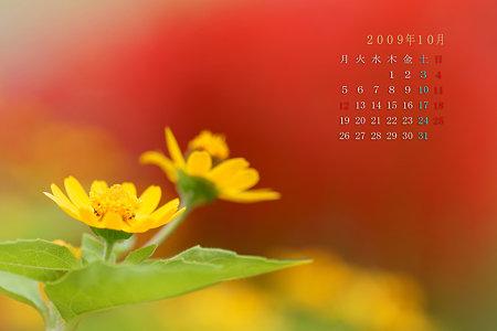 2009年10月カレンダー