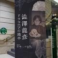 写真: 澁澤展やってるよ。(澁澤龍? ドラコニアの地平)