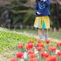 写真: 春のにおい