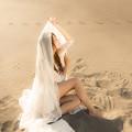 写真: Venus in the desert