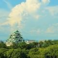 夏の名古屋城
