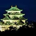 Photos: 名古屋城夜景