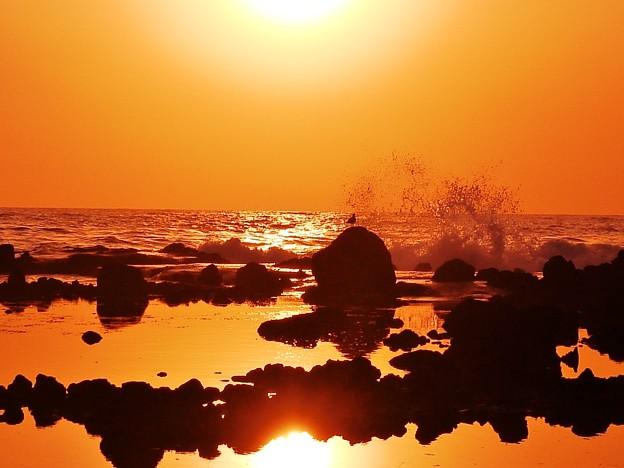 写真: 初夏の日本海