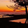 海と田んぼの夕景