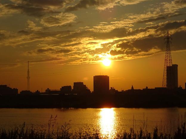 江戸川の向こう岸