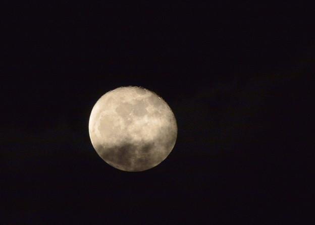 写真: 遅ればせながら立待月さん♪