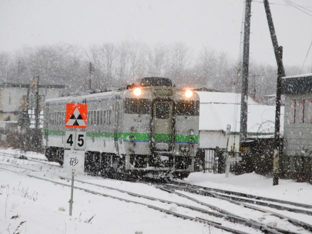4833D 普通列車 1