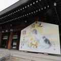 写真: 橿原神宮