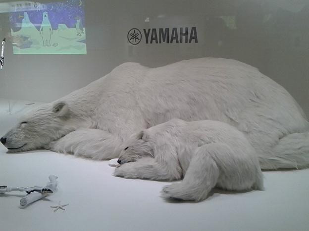 写真: 浜松とうちゃく、ヤマハのお膝元だね。