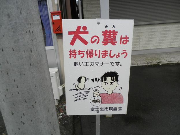 犬糞~富士宮市