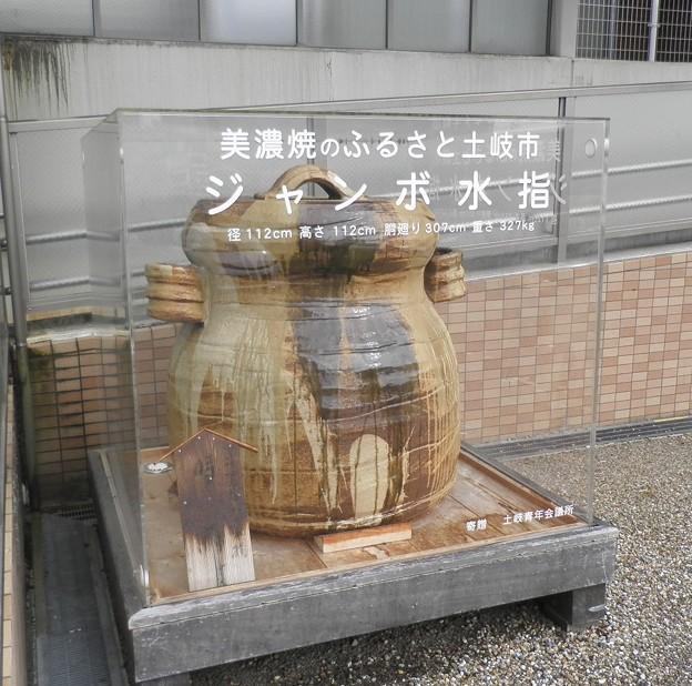 解説~伝説の象