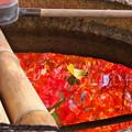写真: 手水鉢の中の秋