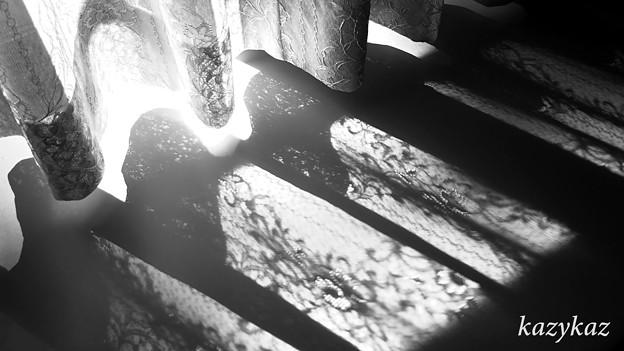 写真: 窓辺陽