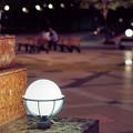 写真: 恋人たちの夜