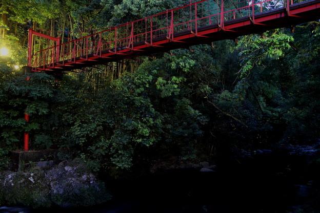 ほたる橋・・蛍が2,3匹今年は少ない