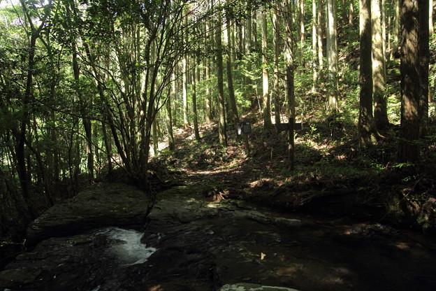 箱滝の右岸から看板方向