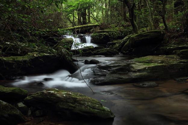 箱滝の上流の流れ