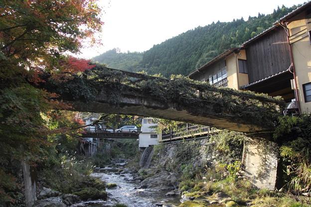 湯の鶴温泉の秋