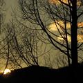 写真: 冬空暮れて