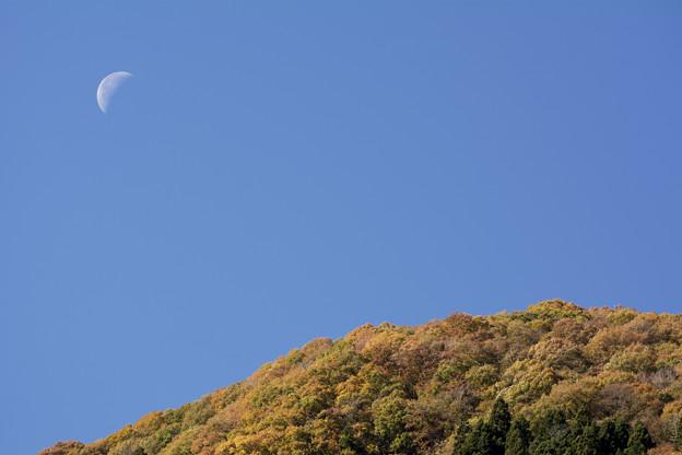 紅葉狩りで月見