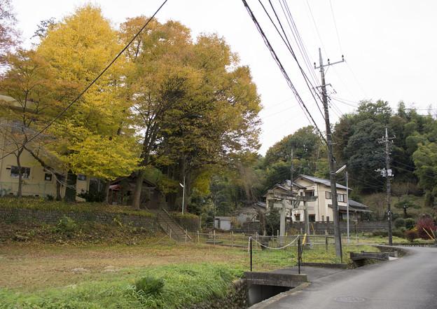 地域の神社
