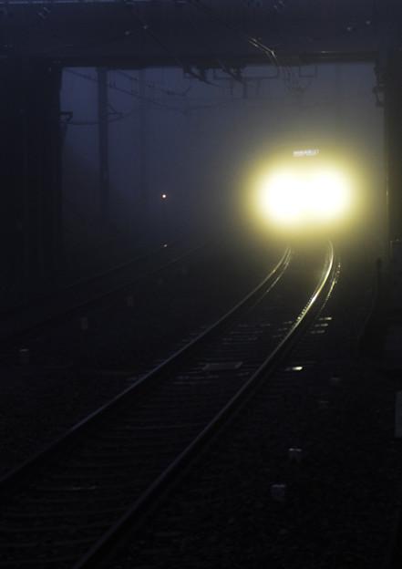 朝霧ににじむ前照灯