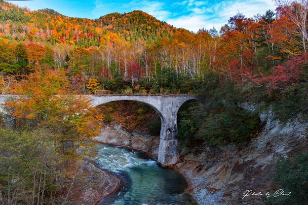 紅葉と橋梁