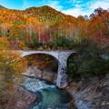 写真: 紅葉と橋梁
