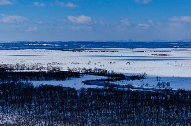 写真: 冬の湿原