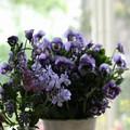切り花を楽しむ季節