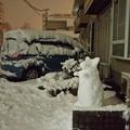 雪降った 2018-01-22 18.45.51_R