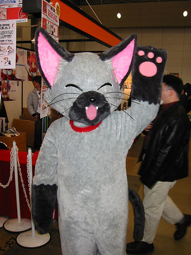 VistalArt's cat