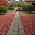 日野誕生院02
