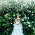 Photos: ミルキーウェイの女神