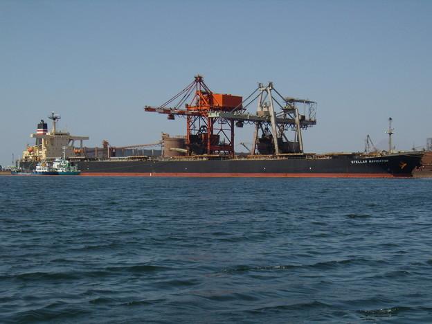 Bulk carrier - STELLA NAVIGATOR