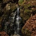 写真: 不動滝の下流の滝