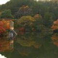 写真: kamakitako