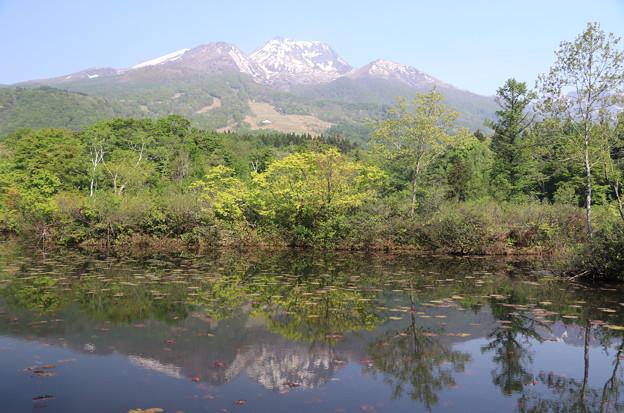 妙高山といもり池