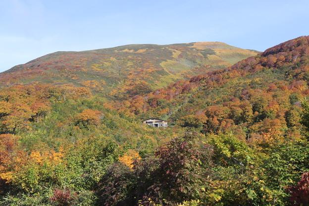 写真: 月山の紅葉