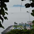 写真: 江の島 (12)