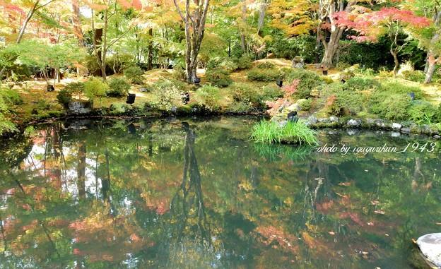 Photos: 松島円通院 紅葉