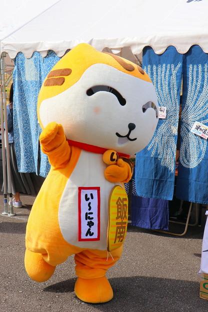 第27回 コスモス祭 (53)