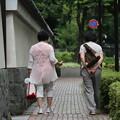 小石川庭園付近の 午後・・