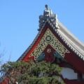 浅草寺の屋根